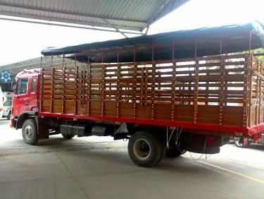 camion-de-estaca_01