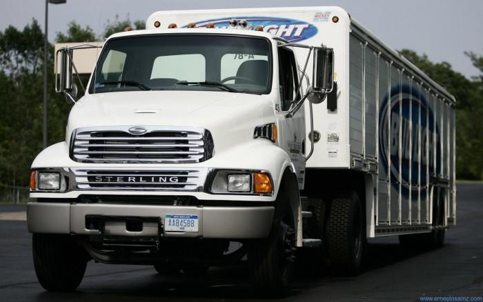 camion-sterling-blanco-de-reparto