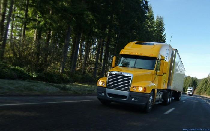 camiones-cascadia_06