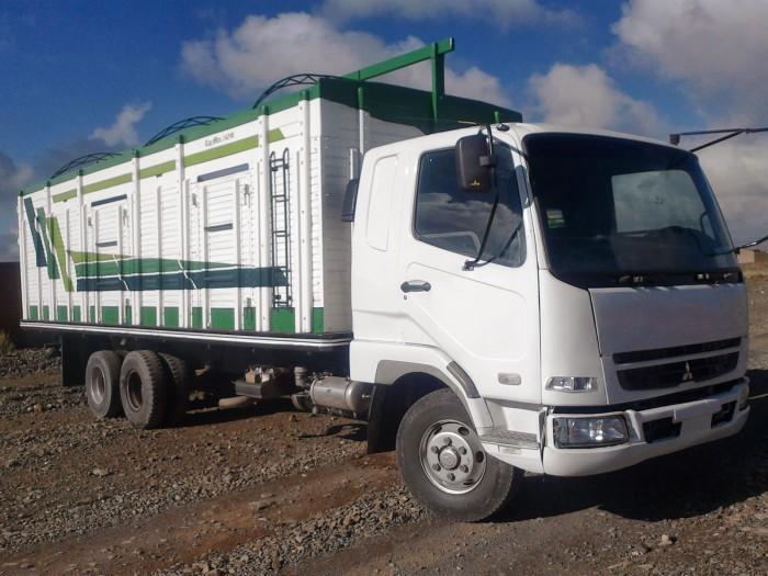 camion-mitsubishi